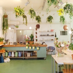 Wildernis: planten, koffie en workshops